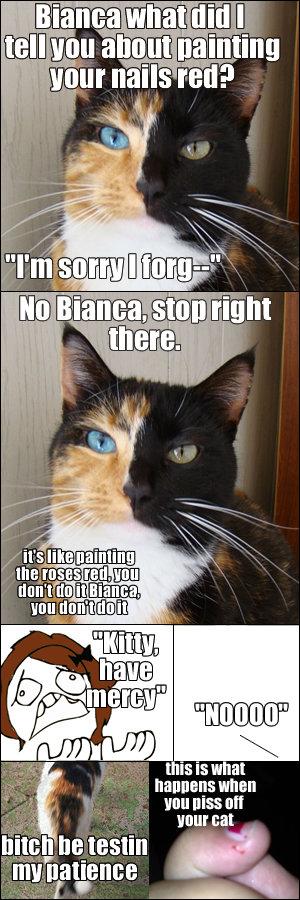 """Kitty. . Bullitt """"III when f Hun [Ilsa Mt I_ I_ he testet. that cat's eyes are fantastic Kitty Bullitt """"III when f Hun [Ilsa Mt I_ he testet that cat's eyes are fantastic"""