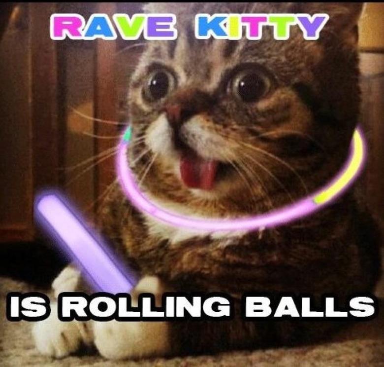 KittyTrippin. . liie, ROE; INC} BALLS KittyTrippin liie ROE; INC} BALLS