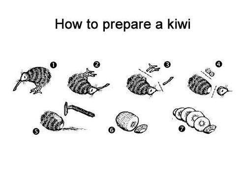 kiwi. . How to prepare a kiwi. nek minute kiwi How to prepare a nek minute