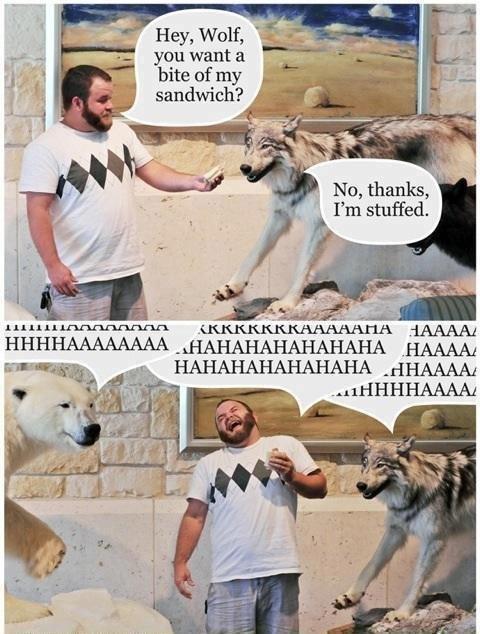Kneeslapper. . you want a ti Mi bite of my 1. sandwich? Hey, Wolf, No, thanks? t penis boner