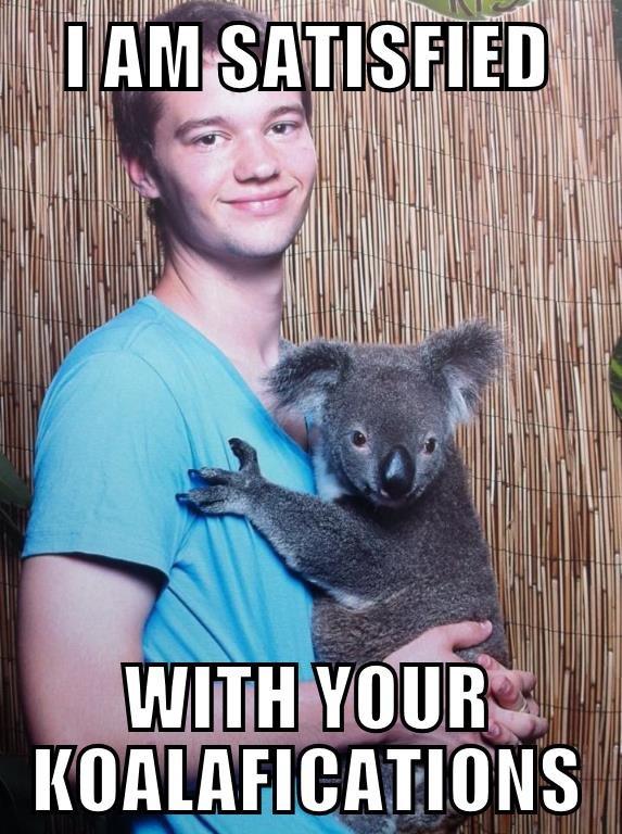 Koala Boy. . kaii ll In F In Koala Boy kaii ll In F