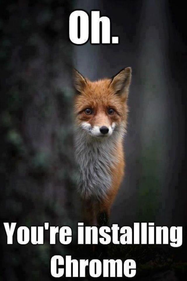 Oh.... You're FIRED FOX hue. firefox Chrome