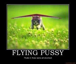 OMG FLYING !. FLYING PUSSY!. OMG FLYING ! PUSSY!