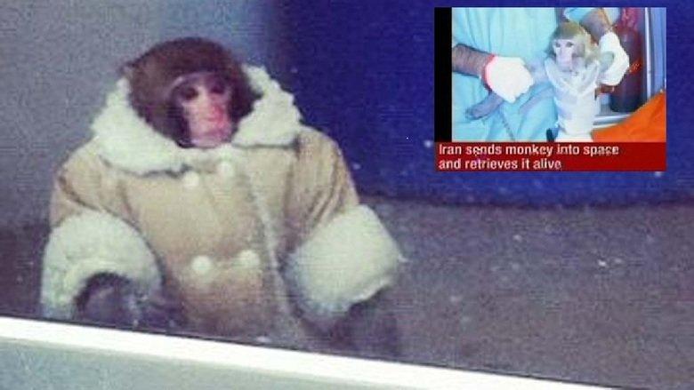 OP Monkey Landing. OP. Look who's waiting for the Iranian Monkey . monkey launch sp