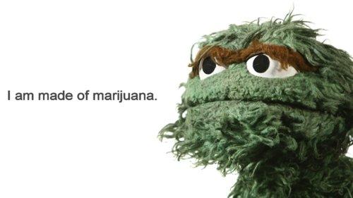 oscar. . I am made of marijuana.. Then why is he such a grouch? oscar I am made of marijuana Then why is he such a grouch?