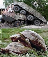same thing. . same thing