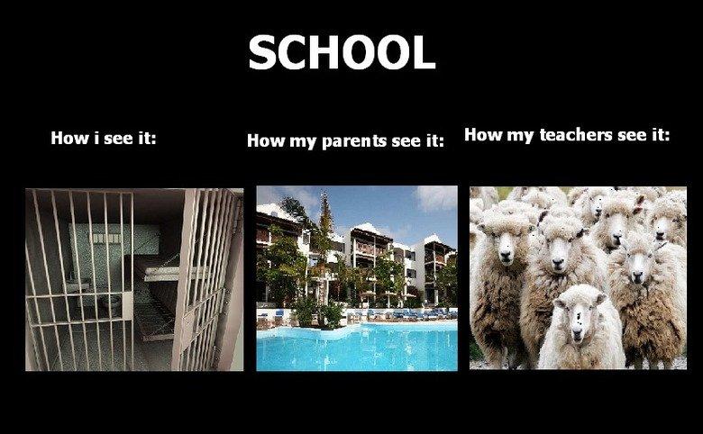 School. . SCHOOL Haw i see it: How my parents we it: How my teachers see it: School funny