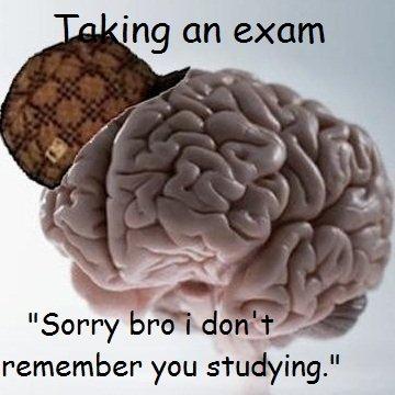 Scumbag brain. Fap fap jizz.. l an exam Herp derp jizz