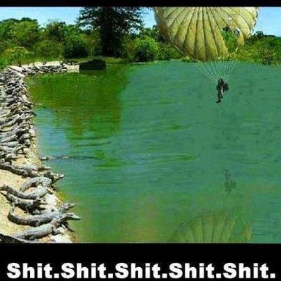 seems like a good idea. .. I've had this for a while. alligator good idea