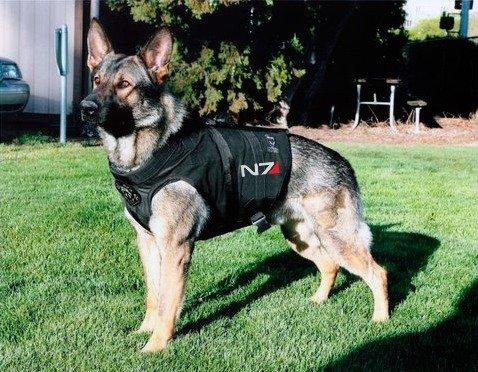 Shepard. . Masseffect N7 shepard