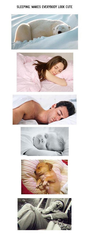 sleep. . MAKES LOOK COTE. Does sleeping make this cuter? sleep MAKES LOOK COTE Does sleeping make this cuter?