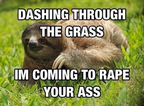 sloths.. . g 'ism sloths g 'ism