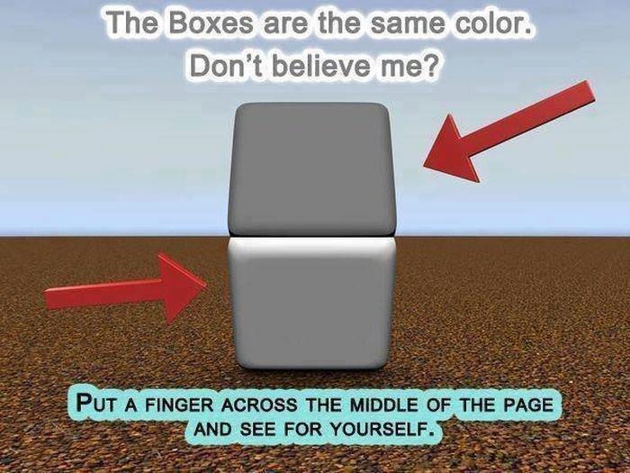 Small mind f-ck. . The Boxes are the 'ii; Birdge. l, ooler. Don' t believe me'? Small mind f-ck The Boxes are the 'ii; Birdge l ooler Don' t believe me'?