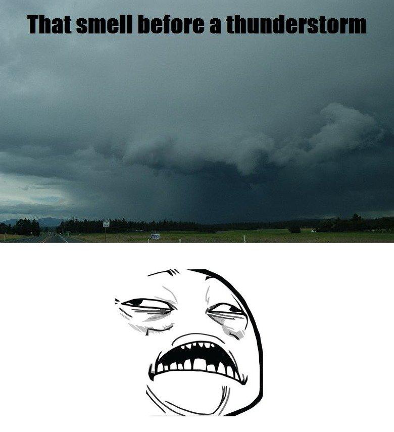 Smell Before Thunderstorm. . Smell Before Thunderstorm