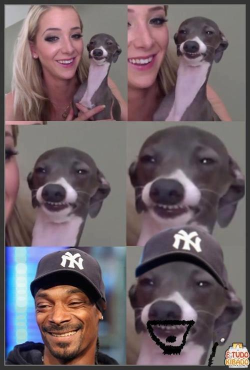 snoop dog. as seen on 4chans sorry if repost. snoop dog