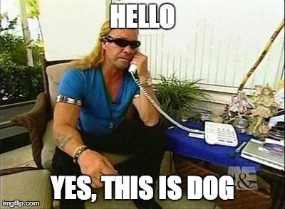 Snooping Doggy Dog. . hello Dog