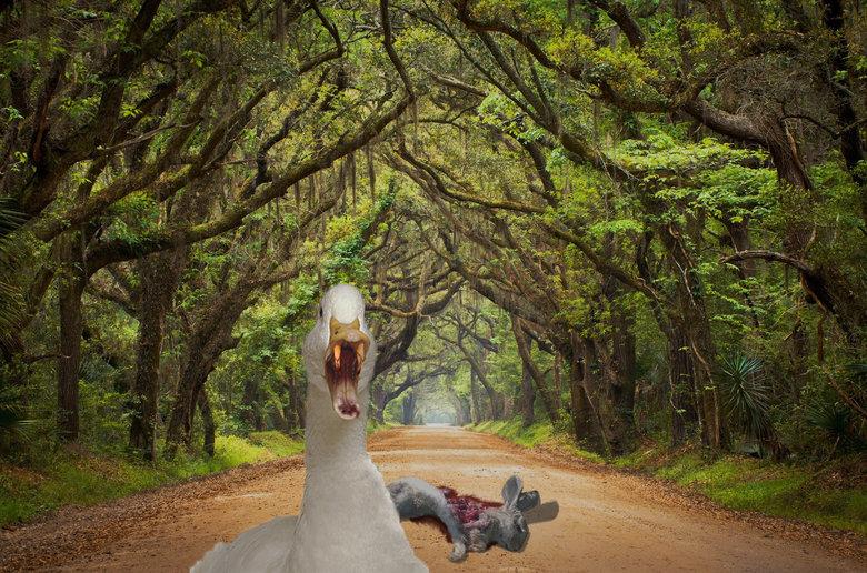 So I finally got photoshop. My very first upload .. bunni is kill Death Duck