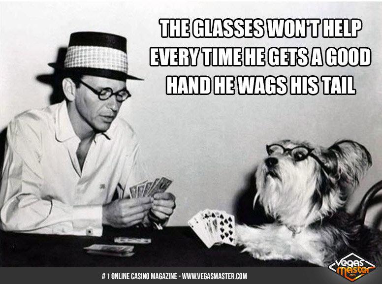 So I got my poker face down but.... . idfrir() poker frank sinatra Dogs