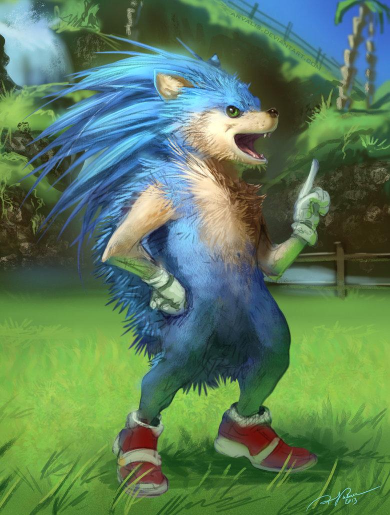 Sonic the Realhog. Artist: Arvalis of DeviantArt More over here==>alternateartlives.blogspot.com/. Sonic the Realhog Artist: Arvalis of DeviantArt More over here==>alternateartlives blogspot com/