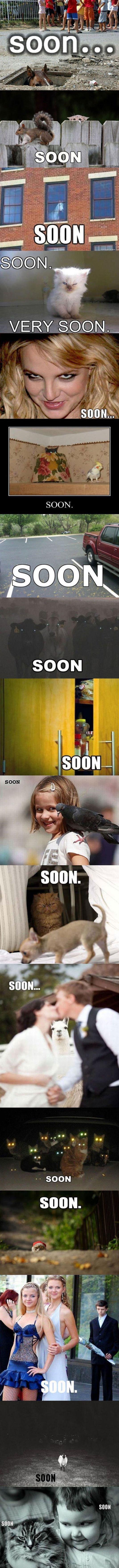Soons. . Soons