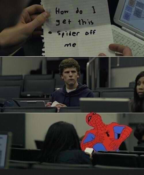 Spiders rule. Swag on infinity. Spiderman rules