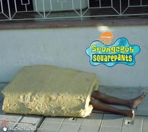 Spongebob?. Spongebob in real life!. spongebob