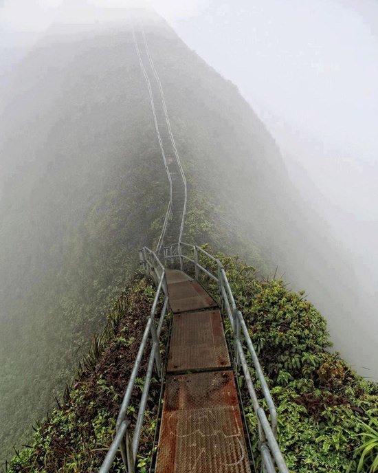 Stairway to Heaven. naturey.. stairway to nope stairs