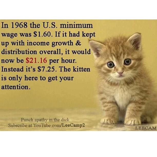Statistics. . dollar sign