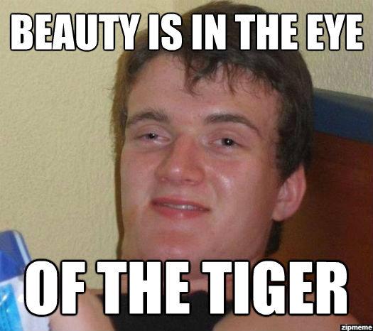Stoner Stanley. TIGERSS YUMMM.. Wat. stoner Stanley meme funny tiger eye of the tiger