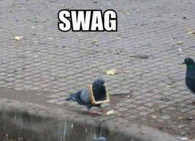 Swag. .. Syak TOOOP KEK Swag Syak TOOOP KEK