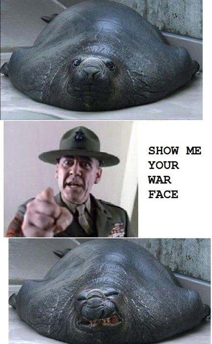 War Face. . War Face