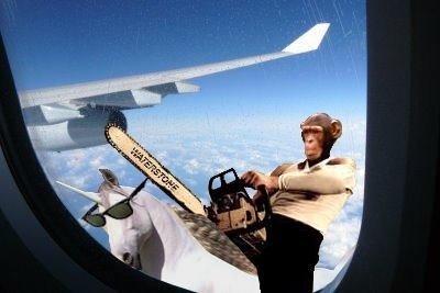 Wat. . chimp monkey plane Airplane chainsaw unicorn sunglasses window Malcolm socks