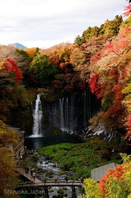 Waterfall. Shiraito Falls is a waterfall in Fujinomiya, Shizuoka Prefecture, near Mount Fuji, Japan. It is part of the Fuji-Hakone-Izu National Park and has bee Waterfall Shiraito Falls is a waterfall in Fujinomiya Shizuoka Prefecture near Mount Fuji Japan It part of the Fuji-Hakone-Izu National Park and has bee