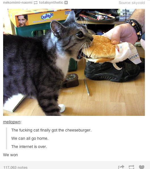 We won. source: nekomimi-naomi.tumblr.com/ seaofcoltrane.tumblr.com/. Tel, fl The fucking can ' get the cheeseburger. We GEN'! ell we heme.. It's not the same without Frank We won source: nekomimi-naomi tumblr com/ seaofcoltrane Tel fl The fucking can ' get the cheeseburger GEN'! ell we heme It's not same without Frank