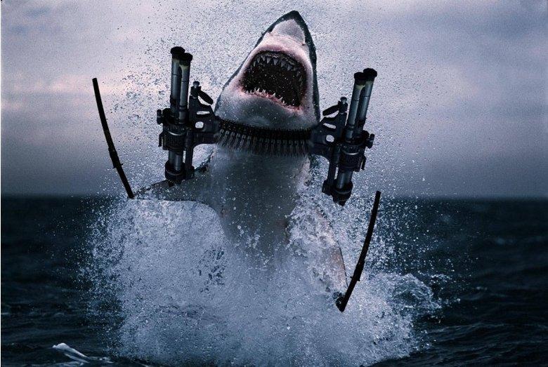 We're done for.. flying machine gun ninja shark. ... I prefer lasers on my sharks. We're done for flying machine gun ninja shark I prefer lasers on my sharks