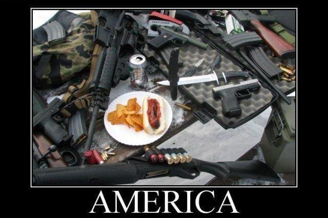 Welcome to America. Welcome to America, here's your guns and a hotdog.. 'Merica! america Guns hotdogs catdogs