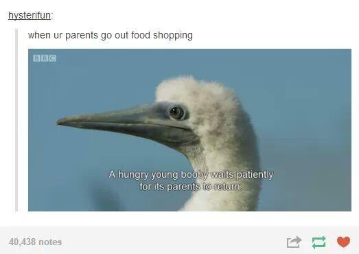 When your parents go shopping. . when m parents go out food shopping. Mmmmmmmmmmmmmmmmmmmmmmm those ravinous young boobies When your parents go shopping when m out food Mmmmmmmmmmmmmmmmmmmmmmm those ravinous young boobies