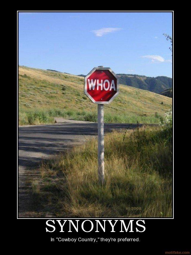 "WHOA!. WHOA THERE PILGRIM. spyro) iur) -)iran) vasi' In ""Cooh Gee nine"" ewe preferred. stop YEEHA whoa Cowboys"
