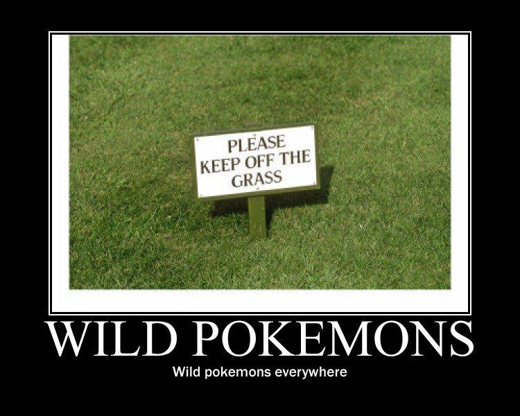 Wild Pokemons. . Wild pokemons everywhere wild Pokemon keep off Grass