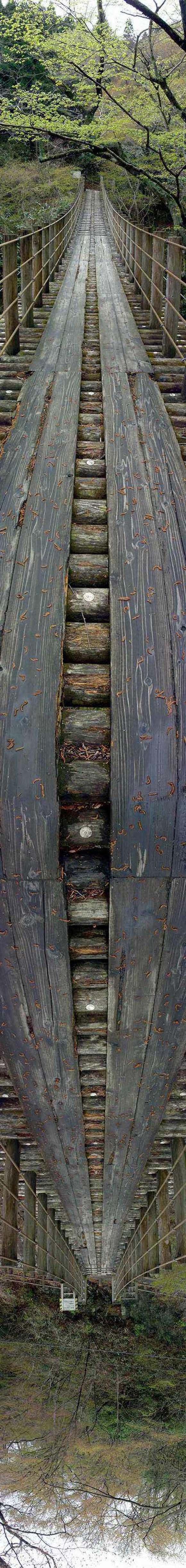 wooden bridge illusion. wooden bridge illusion.. EPIC! lulz wooden bridge il