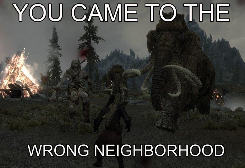 Wrong. . Wrong