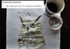 Owl + Coffee = awsome