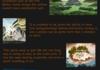 Avatar Revelations Part 5