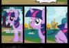 Purple cat thing?